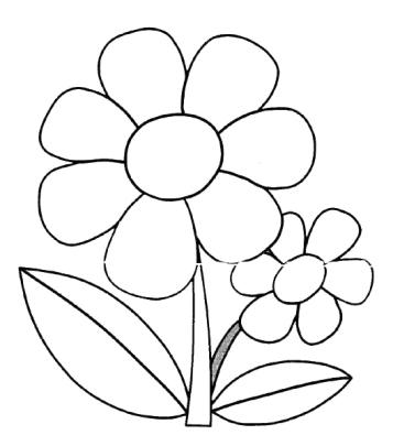 Flor trayectoria